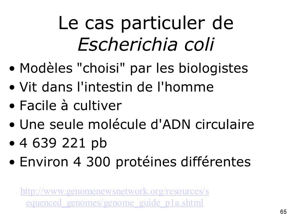 65 Le cas particuler de Escherichia coli Modèles choisi par les biologistes Vit dans l intestin de l homme Facile à cultiver Une seule molécule d ADN circulaire 4 639 221 pb Environ 4 300 protéines différentes http://www.genomenewsnetwork.org/resources/s equenced_genomes/genome_guide_p1a.shtml