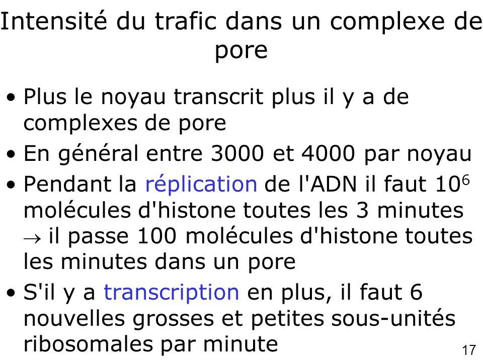 17 Intensité du trafic dans un complexe de pore Plus le noyau transcrit plus il y a de complexes de pore En général entre 3000 et 4000 par noyau Penda