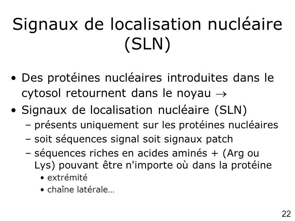 22 Signaux de localisation nucléaire (SLN) Des protéines nucléaires introduites dans le cytosol retournent dans le noyau Signaux de localisation nuclé