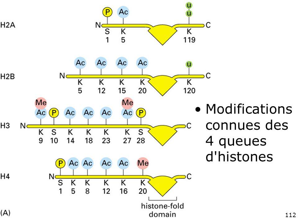 112 Fig 4-35(A) Modifications connues des 4 queues d histones