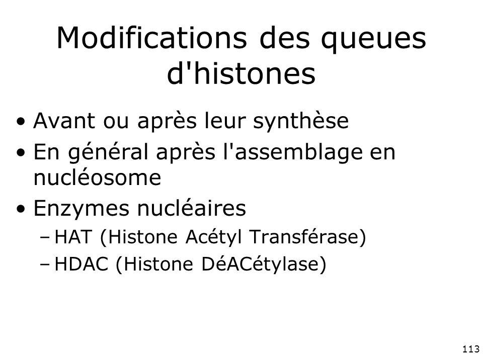 113 Modifications des queues d histones Avant ou après leur synthèse En général après l assemblage en nucléosome Enzymes nucléaires –HAT (Histone Acétyl Transférase) –HDAC (Histone DéACétylase)