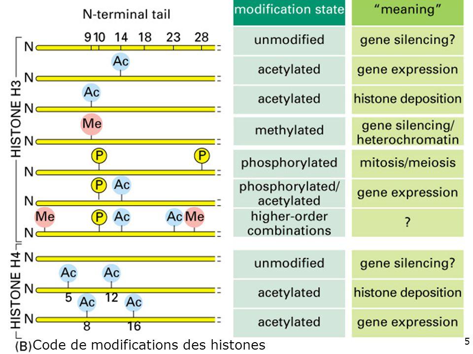115 Fig 4-35(B) Code de modifications des histones