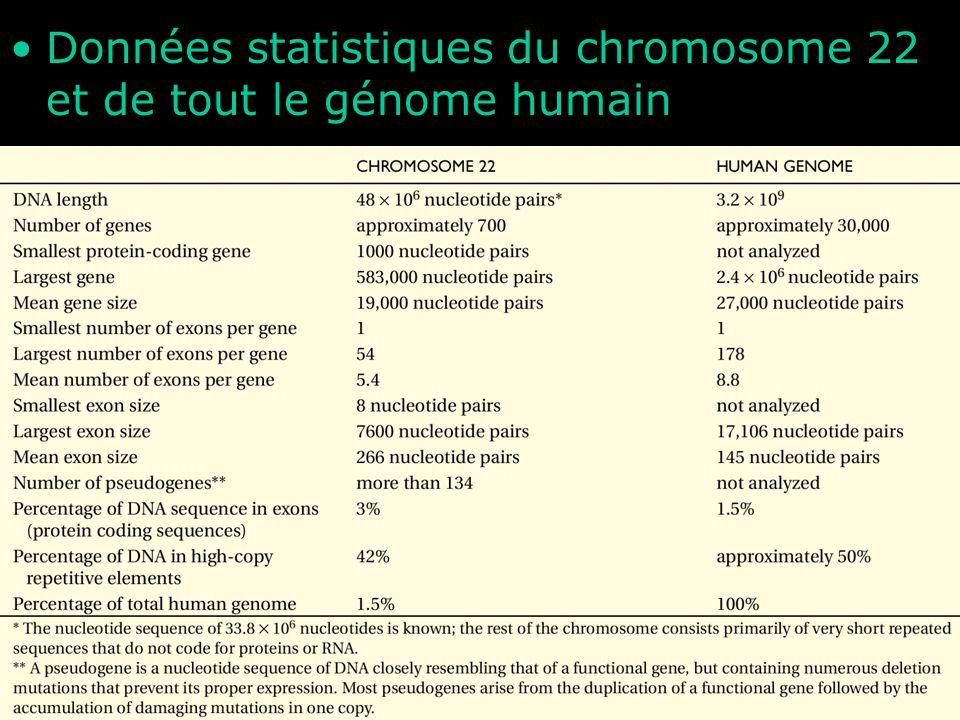 32 Table 4-1 Données statistiques du chromosome 22 et de tout le génome humain