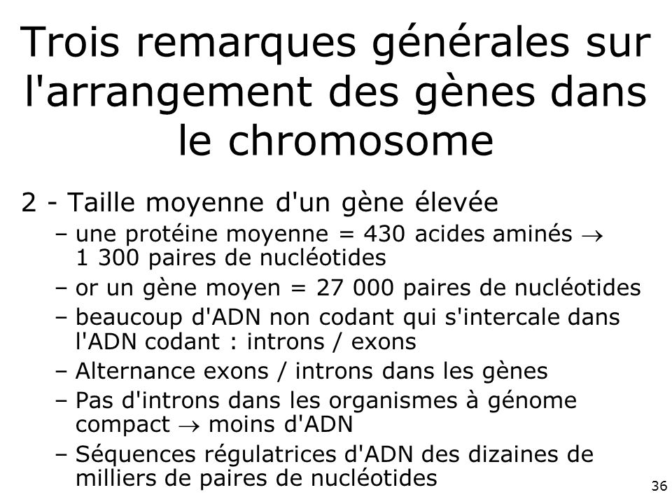 36 Trois remarques générales sur l arrangement des gènes dans le chromosome 2 - Taille moyenne d un gène élevée –une protéine moyenne = 430 acides aminés 1 300 paires de nucléotides –or un gène moyen = 27 000 paires de nucléotides –beaucoup d ADN non codant qui s intercale dans l ADN codant : introns / exons –Alternance exons / introns dans les gènes –Pas d introns dans les organismes à génome compact moins d ADN –Séquences régulatrices d ADN des dizaines de milliers de paires de nucléotides