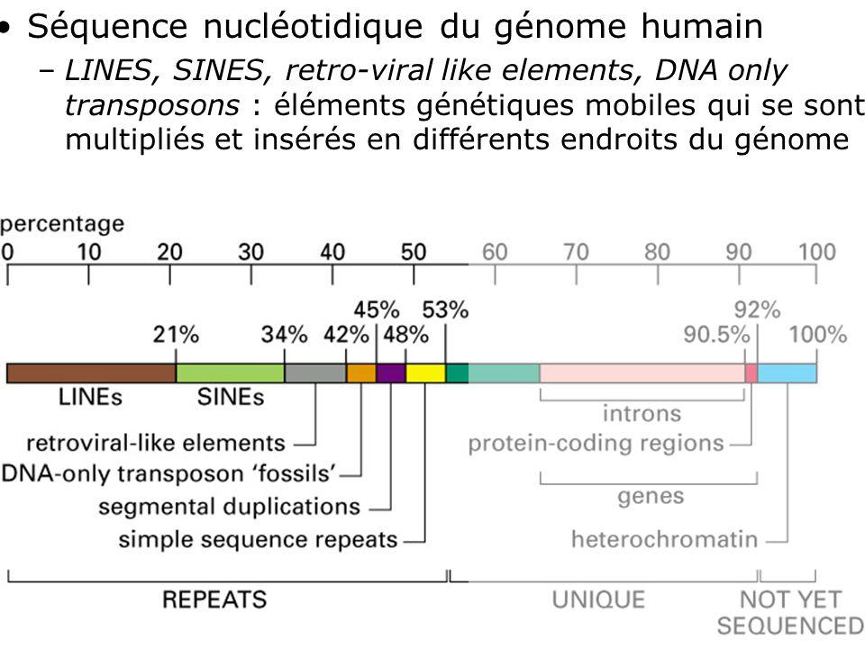 37 Fig 4-17 Séquence nucléotidique du génome humain –LINES, SINES, retro-viral like elements, DNA only transposons : éléments génétiques mobiles qui se sont multipliés et insérés en différents endroits du génome