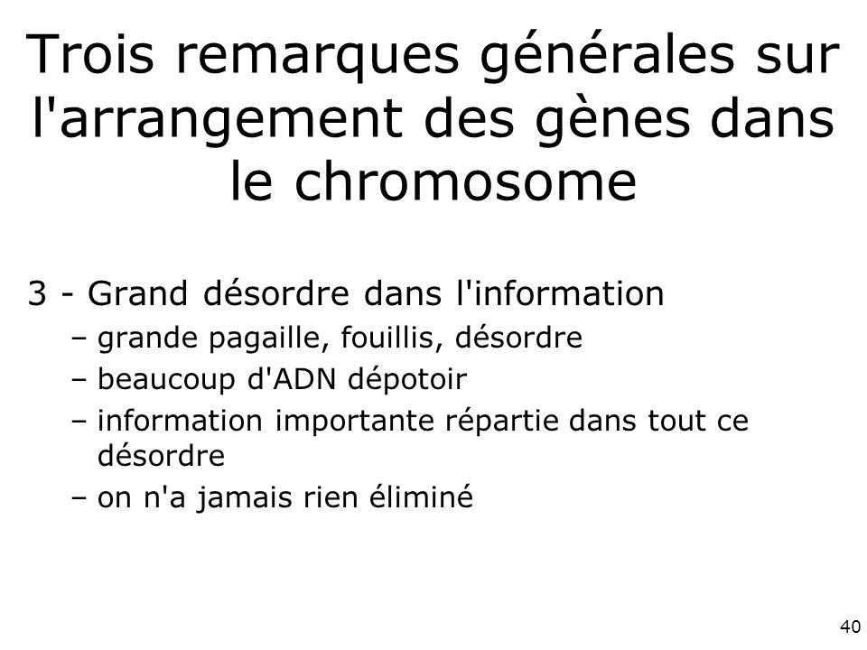 40 Trois remarques générales sur l arrangement des gènes dans le chromosome 3 - Grand désordre dans l information –grande pagaille, fouillis, désordre –beaucoup d ADN dépotoir –information importante répartie dans tout ce désordre –on n a jamais rien éliminé