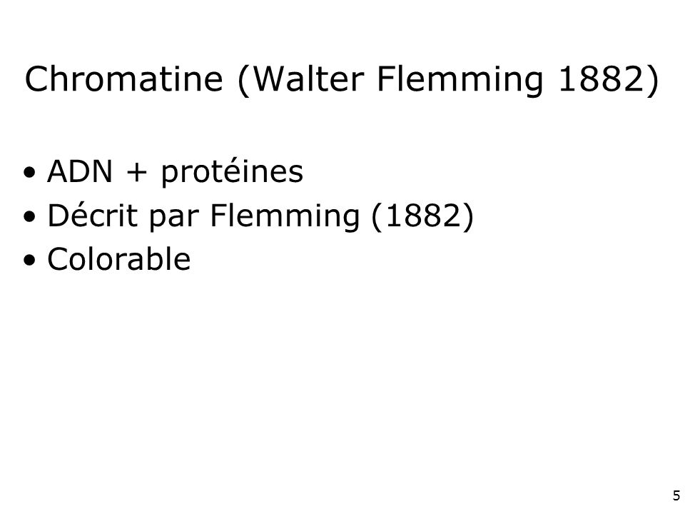 5 Chromatine (Walter Flemming 1882) ADN + protéines Décrit par Flemming (1882) Colorable