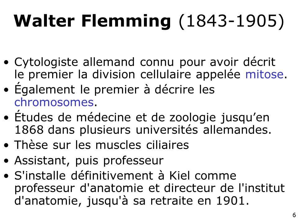 7 Walter Flemming (1843-1905) Vers le milieu du XIXe siècle, la connaissance de la division cellulaire était limitée par la faible qualité des lentilles des microscopes et des méthodes de coloration.