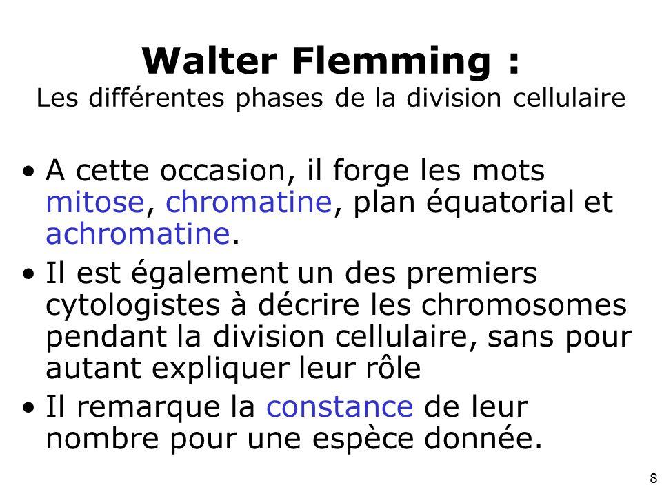 8 Walter Flemming : Les différentes phases de la division cellulaire A cette occasion, il forge les mots mitose, chromatine, plan équatorial et achromatine.