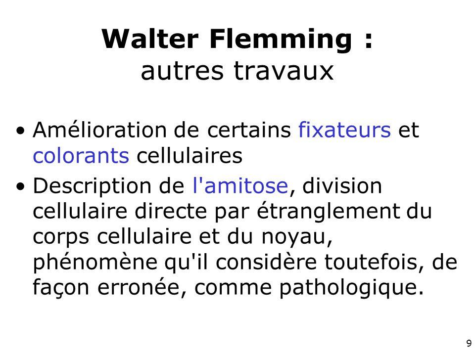 9 Walter Flemming : autres travaux Amélioration de certains fixateurs et colorants cellulaires Description de l amitose, division cellulaire directe par étranglement du corps cellulaire et du noyau, phénomène qu il considère toutefois, de façon erronée, comme pathologique.