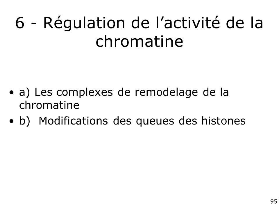 95 6 - Régulation de lactivité de la chromatine a) Les complexes de remodelage de la chromatine b) Modifications des queues des histones