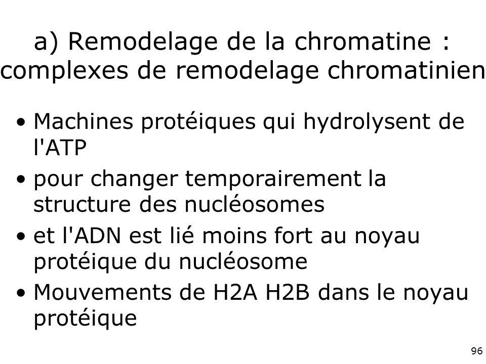 96 a) Remodelage de la chromatine : complexes de remodelage chromatinien Machines protéiques qui hydrolysent de l ATP pour changer temporairement la structure des nucléosomes et l ADN est lié moins fort au noyau protéique du nucléosome Mouvements de H2A H2B dans le noyau protéique