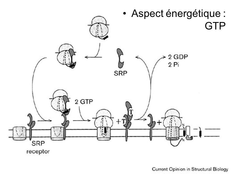 Stroud,RM1999Fig 1 Aspect énergétique : GTP
