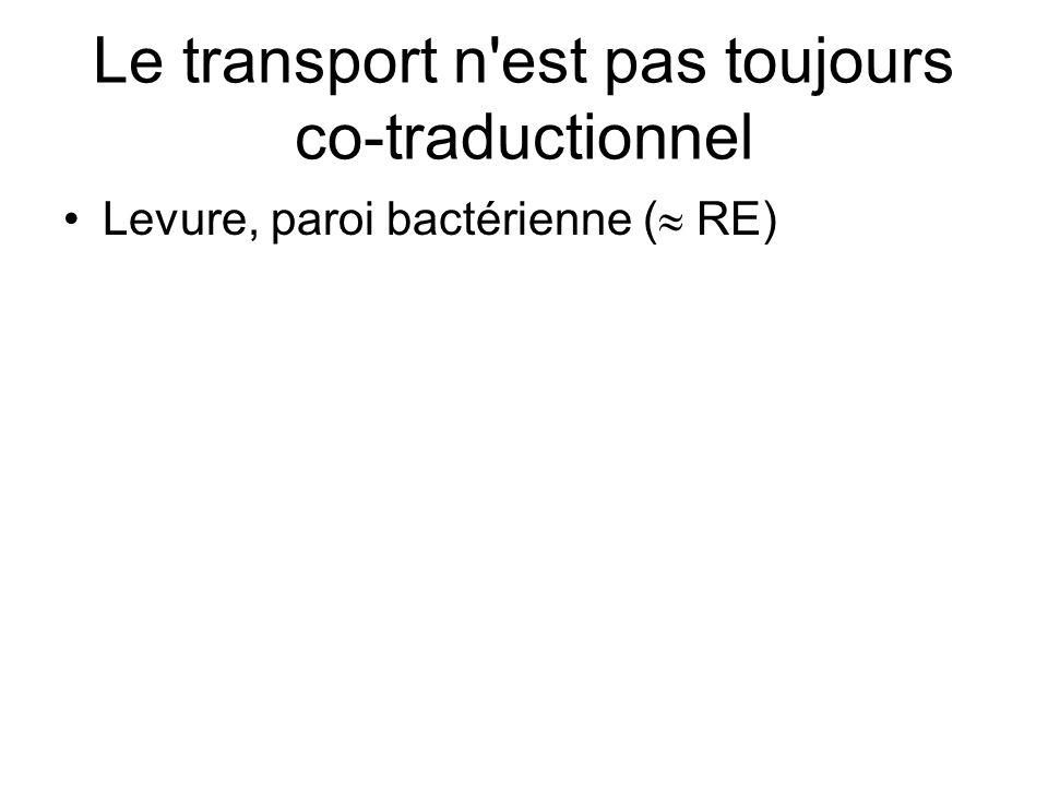 Le transport n est pas toujours co-traductionnel Levure, paroi bactérienne ( RE)
