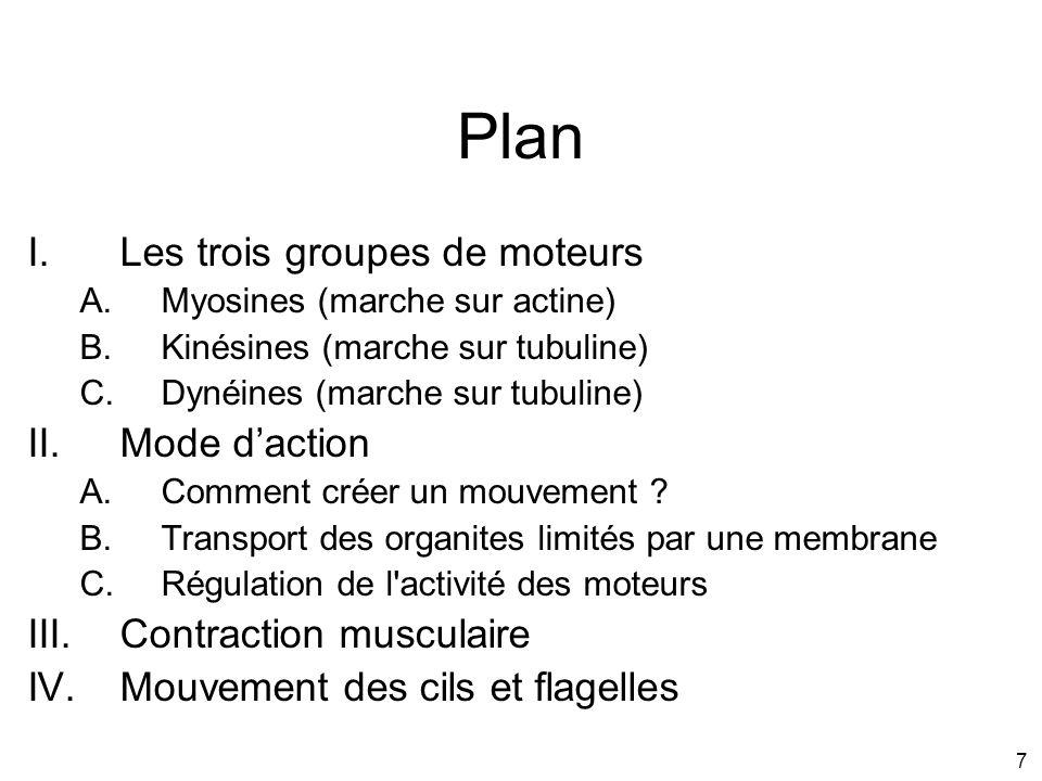 7 Plan I.Les trois groupes de moteurs A.Myosines (marche sur actine) B.Kinésines (marche sur tubuline) C.Dynéines (marche sur tubuline) II.Mode dactio