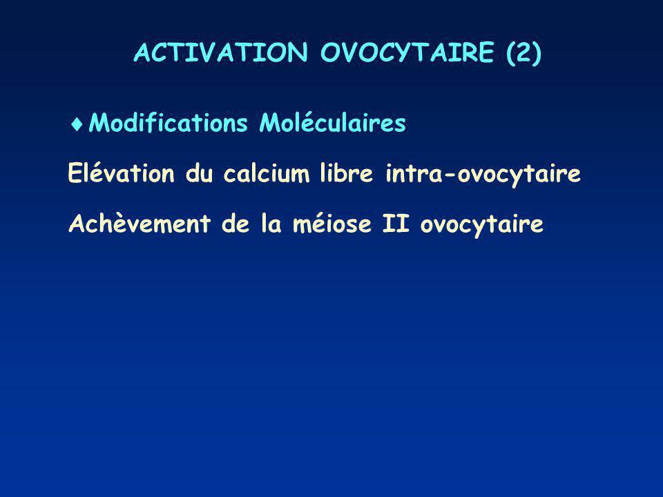 ACTIVATION OVOCYTAIRE (2) Modifications Moléculaires Elévation du calcium libre intra-ovocytaire Achèvement de la méiose II ovocytaire