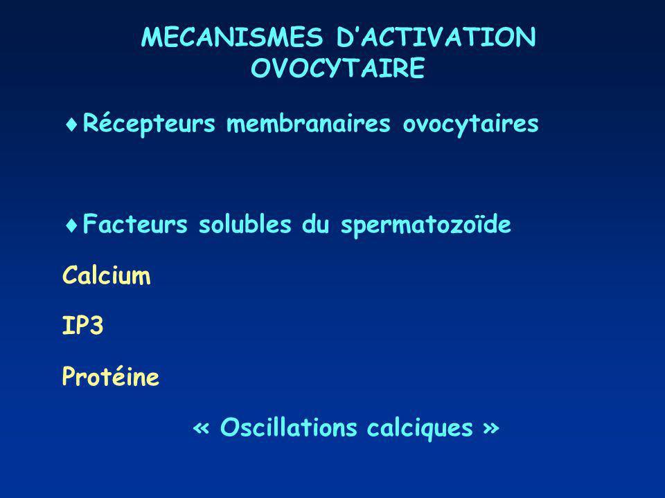 MECANISMES DACTIVATION OVOCYTAIRE Récepteurs membranaires ovocytaires Facteurs solubles du spermatozoïde Calcium IP3 Protéine « Oscillations calciques »
