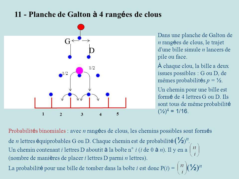 1/2 3 2 1 4 5 G D 11 - Planche de Galton à 4 rang é es de clous Probabilit é s binomiales : avec n rang é es de clous, les chemins possibles sont form é s de n lettres é quiprobables G ou D.