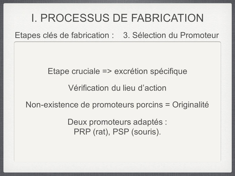 Etapes clés de fabrication :3. Sélection du Promoteur I. PROCESSUS DE FABRICATION Etape cruciale => excrétion spécifique Vérification du lieu daction