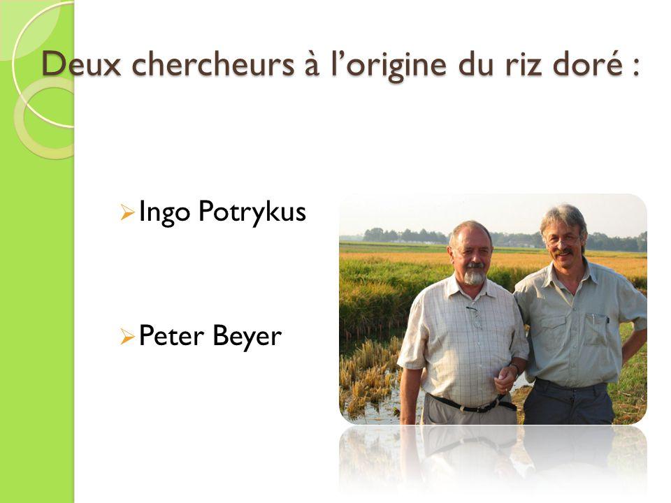 Deux chercheurs à lorigine du riz doré : Ingo Potrykus Peter Beyer