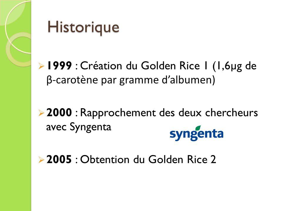 Historique 1999 : Création du Golden Rice 1 (1,6µg de β-carotène par gramme dalbumen) 2000 : Rapprochement des deux chercheurs avec Syngenta 2005 : Obtention du Golden Rice 2