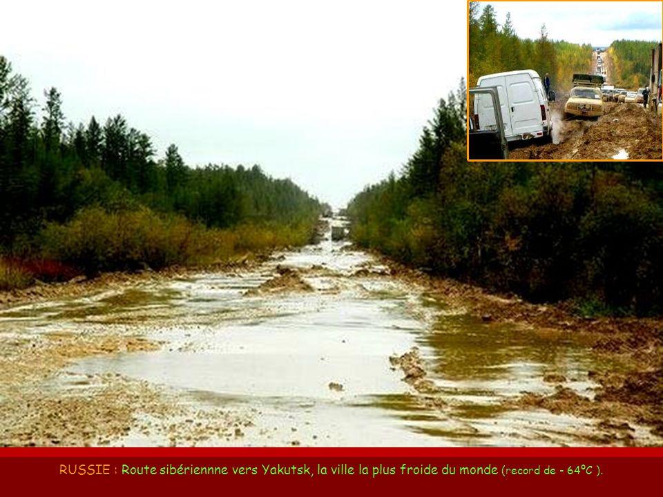CAROLINE du SUD CAROLINE du SUD (USA) : Route 17, dans le Conté de Beaufort.