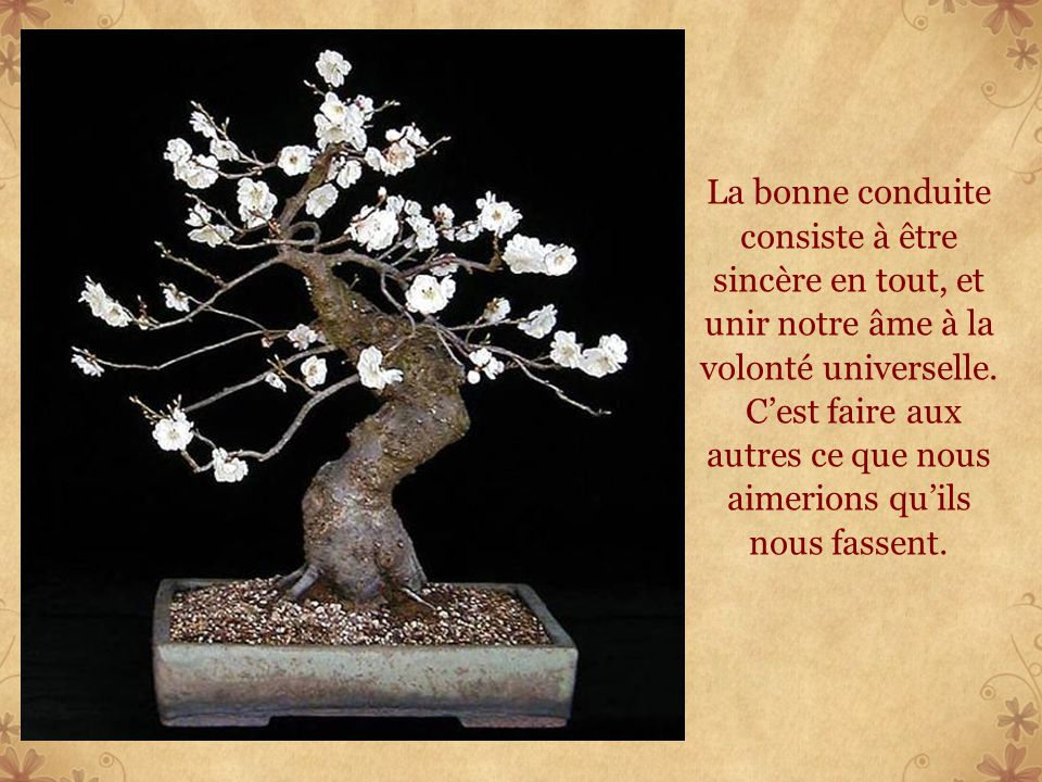 La bonne conduite consiste à être sincère en tout, et unir notre âme à la volonté universelle.