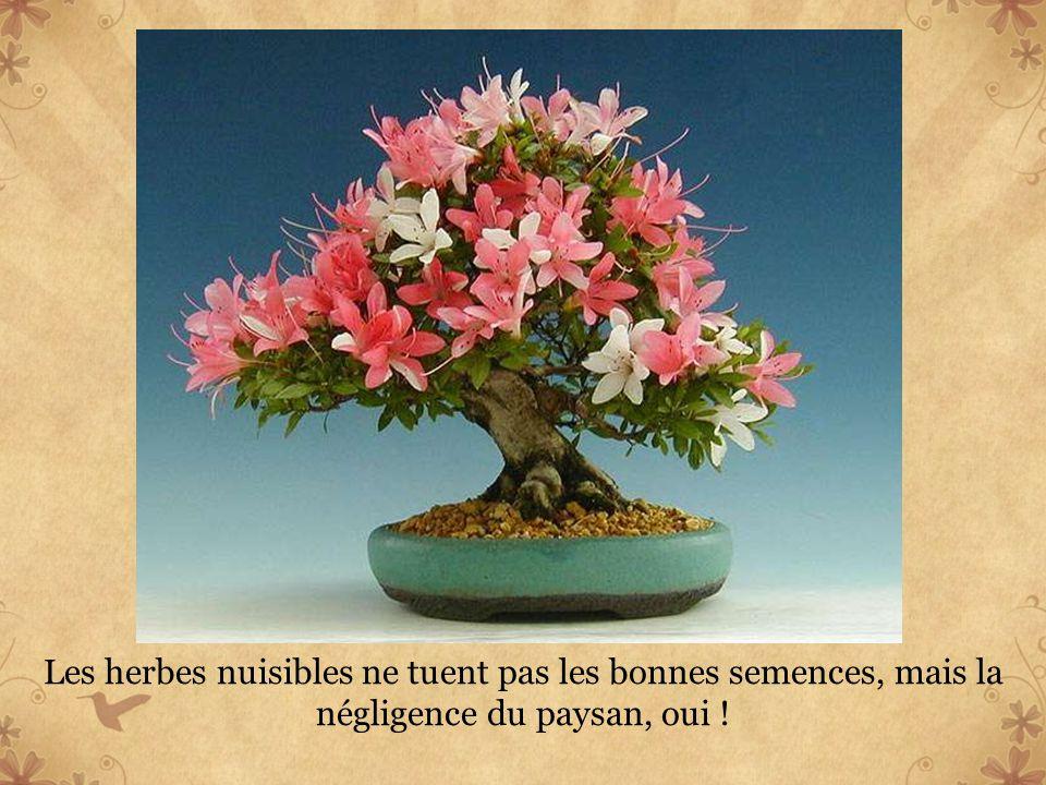 Seuls les grands sages et les ignorants restent immuables.
