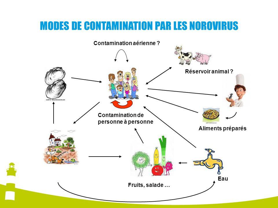 MODES DE CONTAMINATION PAR LES NOROVIRUS Eau Fruits, salade … Aliments préparés Réservoir animal ? Contamination de personne à personne Contamination