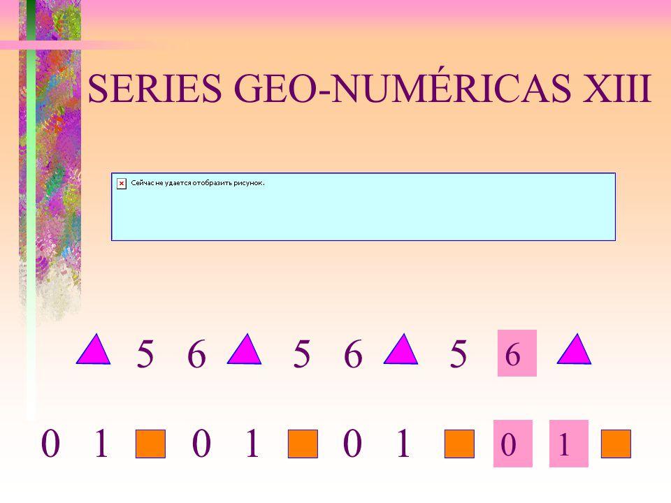SERIES GEO-NUMÉRICAS XIII 6 01 5 6 5 0 1