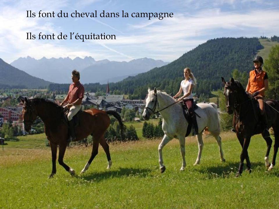Ils font du cheval dans la campagne Ils font de léquitation