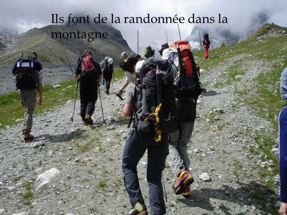 Ils font de la randonnée dans la montagne