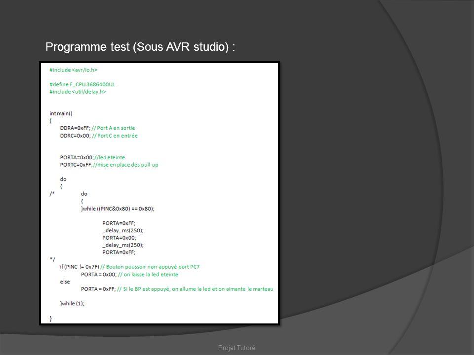Projet Tutoré Programme test (Sous AVR studio) :