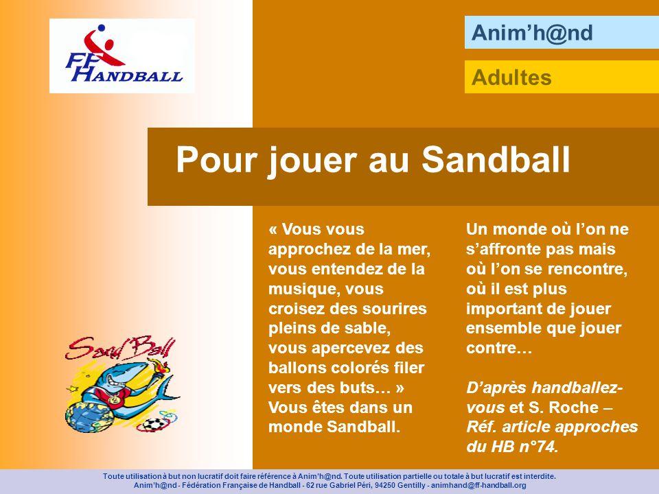 Animh@nd Sur le sable, délimitez une aire de jeu de 12 m de long sur 12 à 14 m de large et deux aires de changement (3 m).