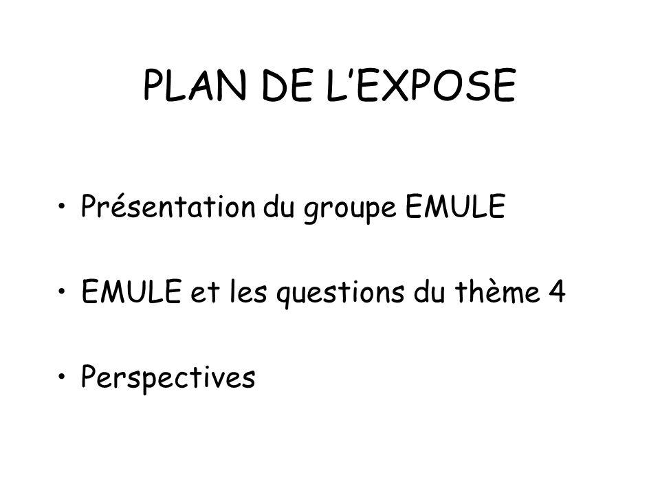PLAN DE LEXPOSE Présentation du groupe EMULE EMULE et les questions du thème 4 Perspectives