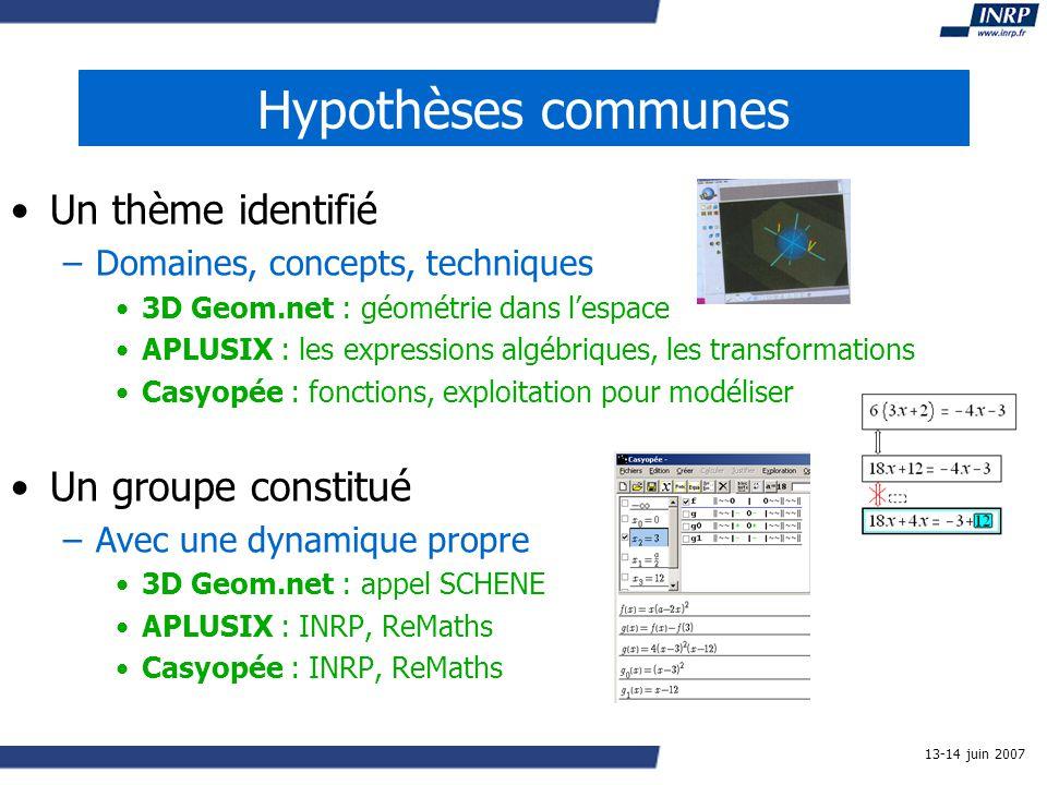 13-14 juin 2007 Hypothèses communes Un thème identifié –Domaines, concepts, techniques 3D Geom.net : géométrie dans lespace APLUSIX : les expressions algébriques, les transformations Casyopée : fonctions, exploitation pour modéliser Un groupe constitué –Avec une dynamique propre 3D Geom.net : appel SCHENE APLUSIX : INRP, ReMaths Casyopée : INRP, ReMaths