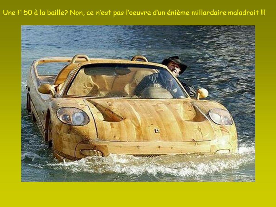 Mr Livio De Marchi Est un sculpteur très connu à Venise, où il possède la seule voiture de la ville: une Ferrari en bois, amphibie. Il a aussi créé un