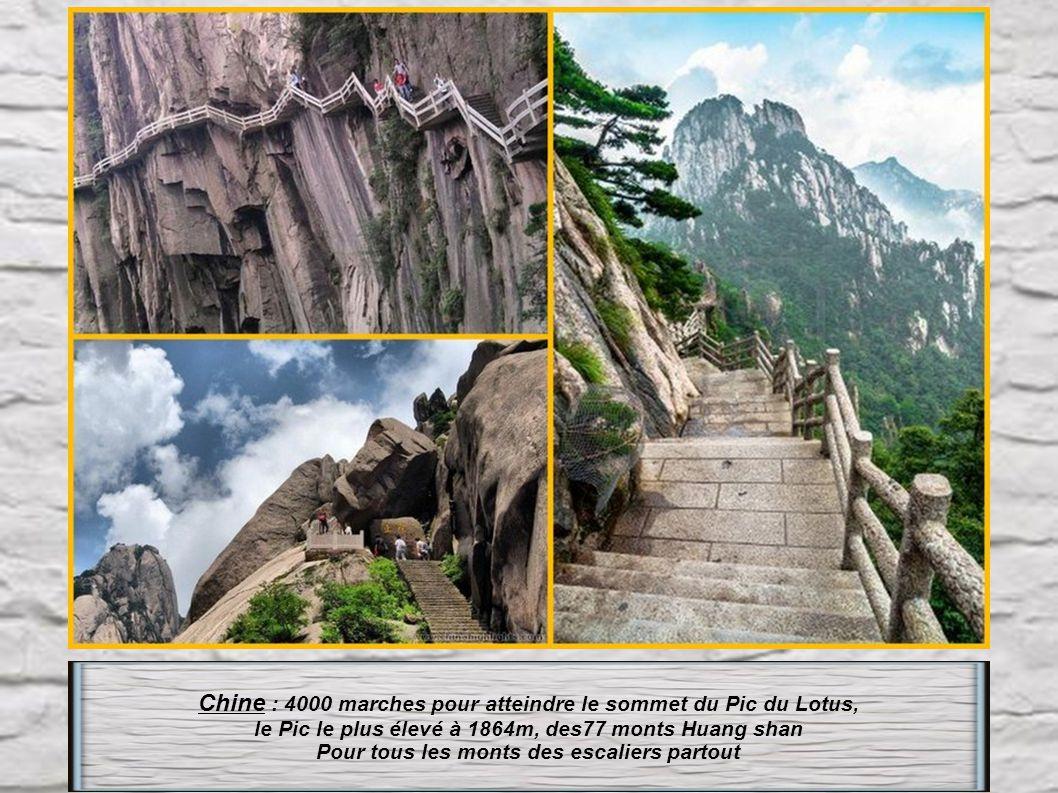 Thaïlande : Un escalier de 300 marches datant de 1383, pour atteindre la colline sacrée Doi Suthep dominée par le monastère le plus vénéré du nord de