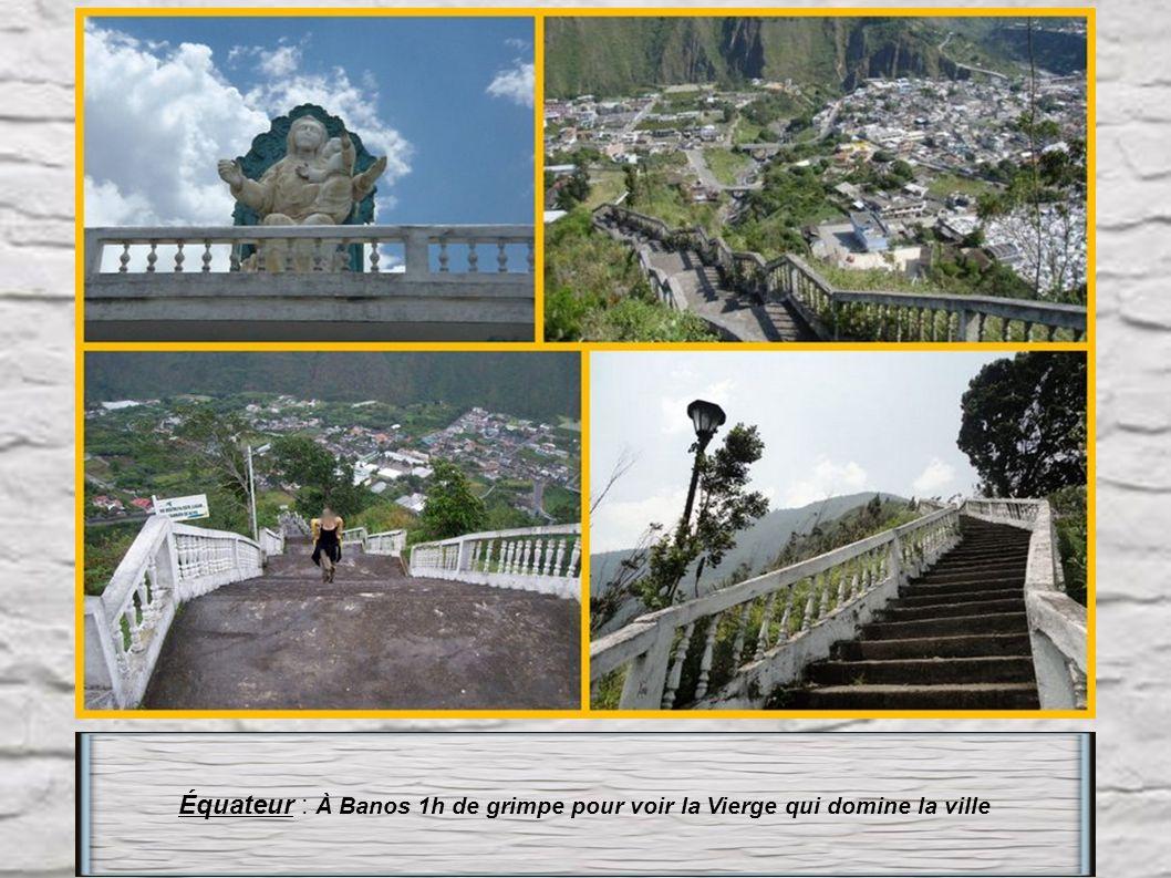 Royaume-Uni : Île St Hélène L' escalier Jacob's ladder à Jamestown compte 699 marches avec un angle de montée de plus de 45°