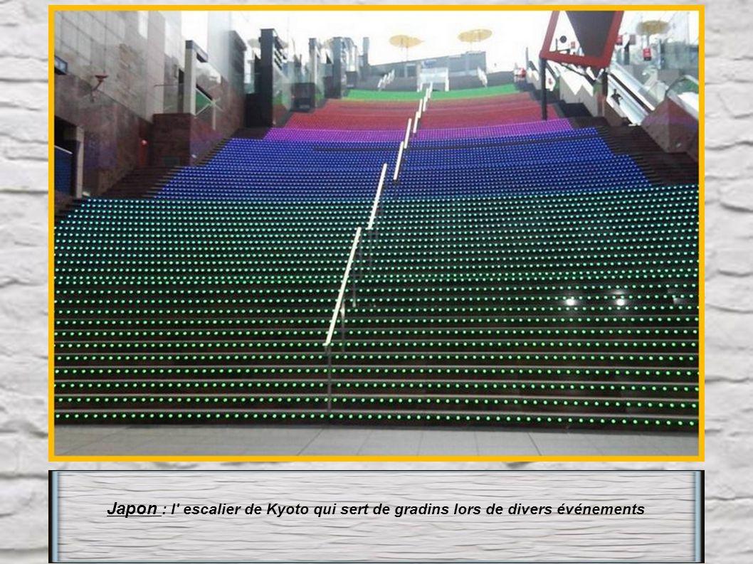 Japon : l escalier de Kyoto qui sert de gradins lors de divers événements