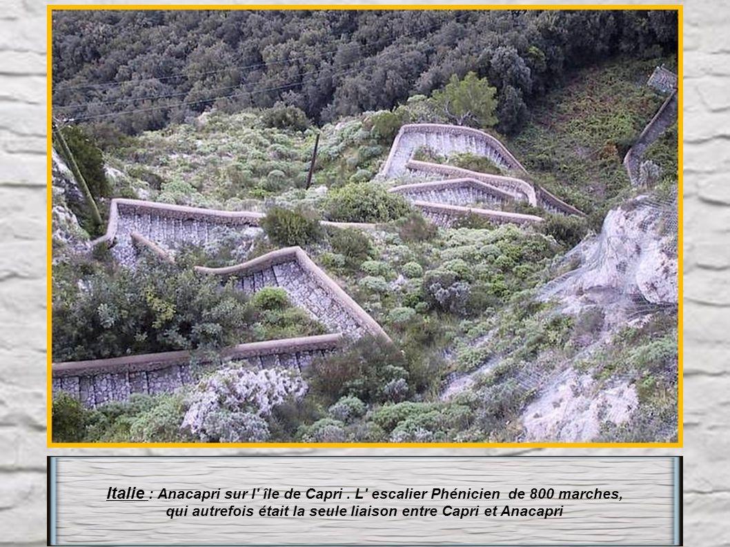 Italie : en Sardaigne : Capo caccia l' escalier du chevreuil (très raide), de 656 marches