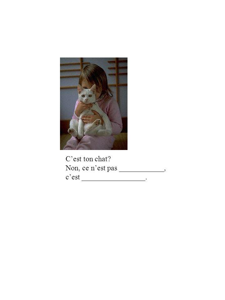 Cest ton chat Non, ce nest pas ____________, cest _________________.