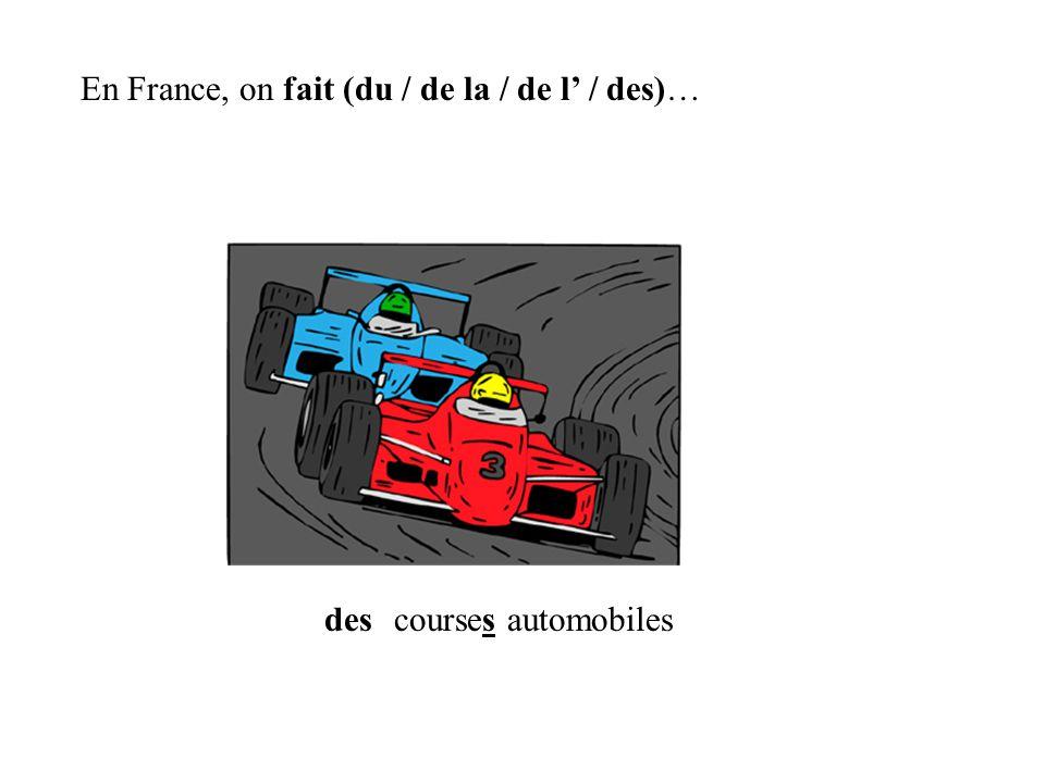 des En France, on fait (du / de la / de l / des)… courses automobiles