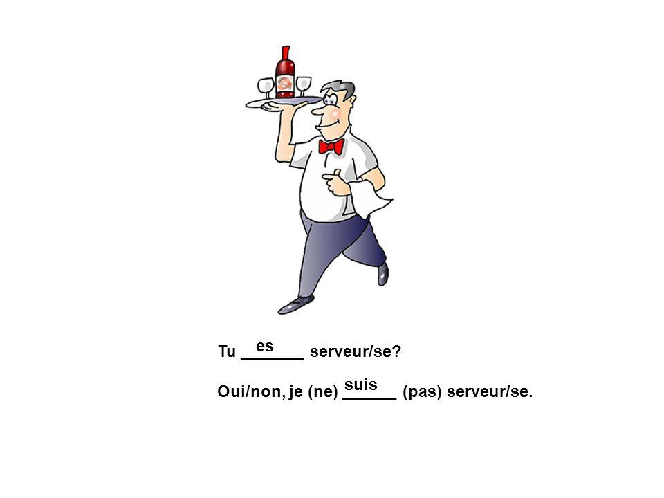 Tu _______ serveur/se? Oui/non, je (ne) ______ (pas) serveur/se. es suis