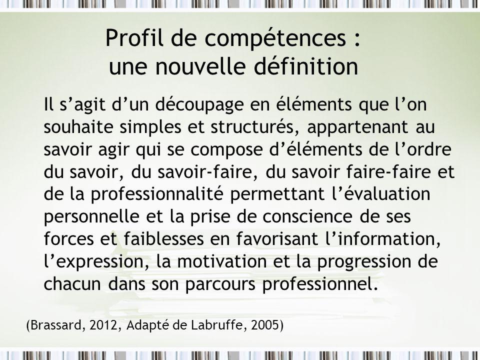 Profil de compétences : une nouvelle définition Il sagit dun découpage en éléments que lon souhaite simples et structurés, appartenant au savoir agir