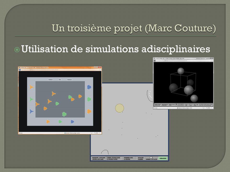 Utilisation de simulations adisciplinaires