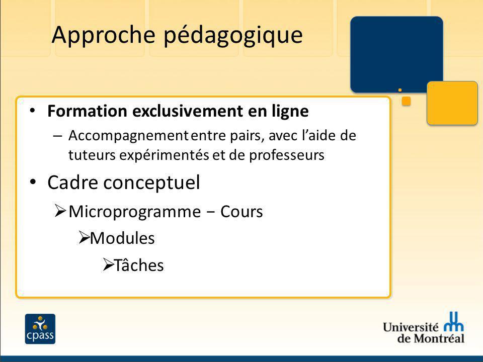 Approche pédagogique Formation exclusivement en ligne – Accompagnement entre pairs, avec laide de tuteurs expérimentés et de professeurs Cadre concept