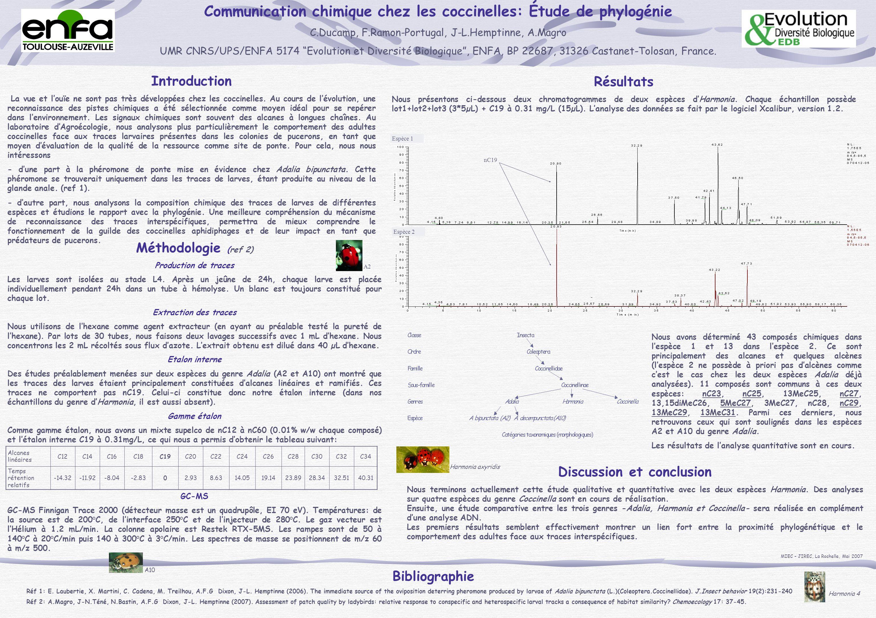 Communication chimique chez les coccinelles: Étude de phylogénie C.Ducamp, F.Ramon-Portugal, J-L.Hemptinne, A.Magro UMR CNRS/UPS/ENFA 5174 Evolution e