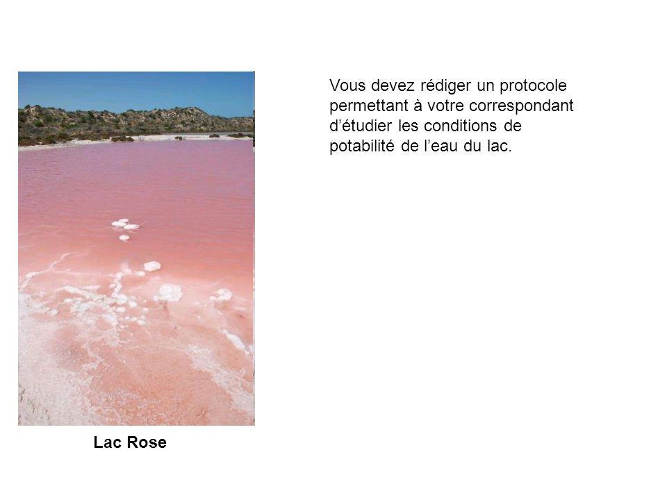 Lac Rose Chers correspondants français, Je me trouve au bord du lac rose en Australie.