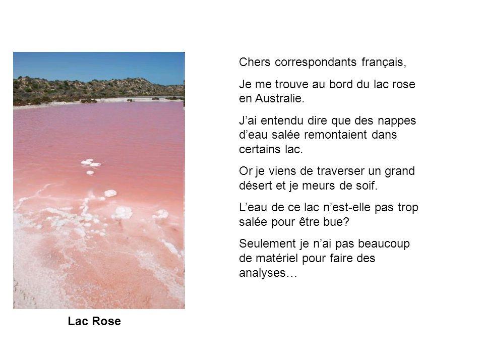Lac Rose Chers correspondants français, Je me trouve au bord du lac rose en Australie. Jai entendu dire que des nappes deau salée remontaient dans cer